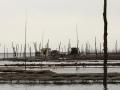 copyrightCh.Caramatie.les ports DPP_ports0024